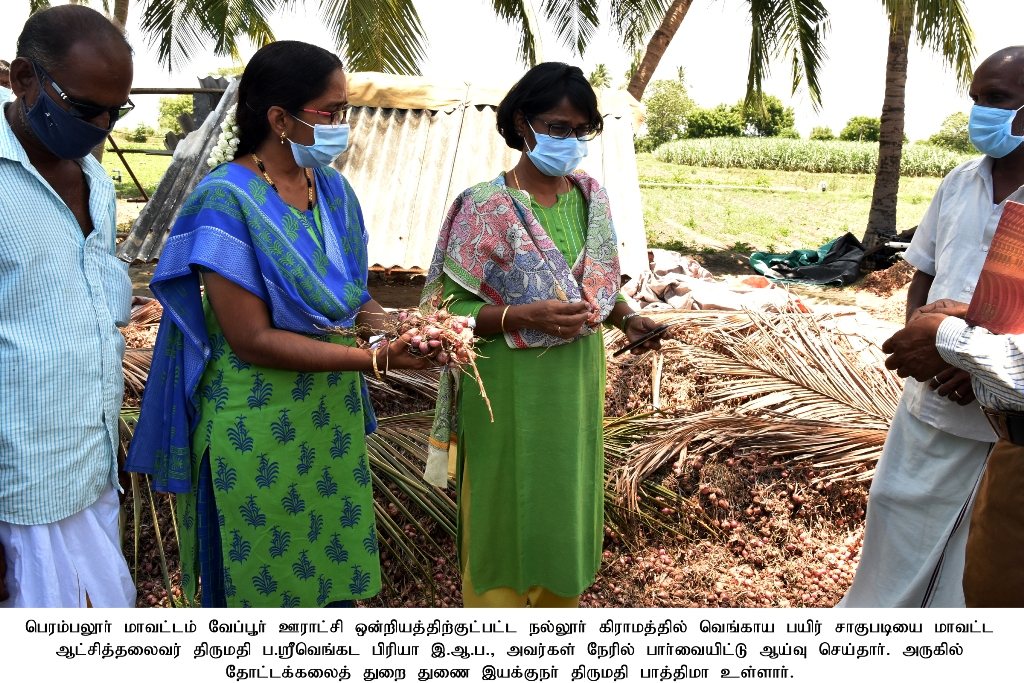 Rs. 2.71 crore grant to 310 farmers for onion storage system to be provided soon District Collector informed-28.08.2021.