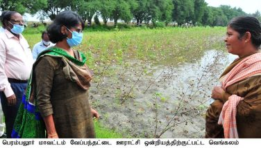 Inspection of the crop damage owing to the North East Monsoon by the District Collector - 21.01.2021