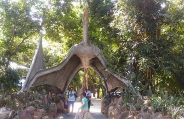 indroda fossil park entrace
