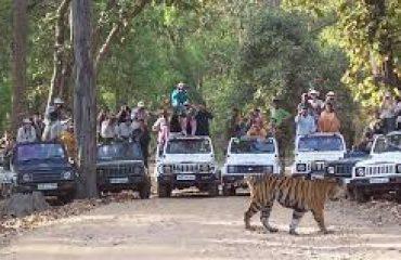 कान्हा राष्ट्रीय उद्यान
