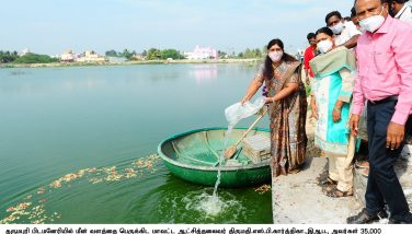 AD Fisheries Department News