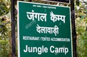 Jungle Camp Delawadi