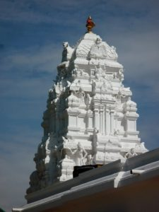 Rajapathy temple top view