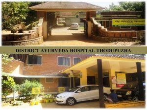 district ayurveda hospital thodupuzha