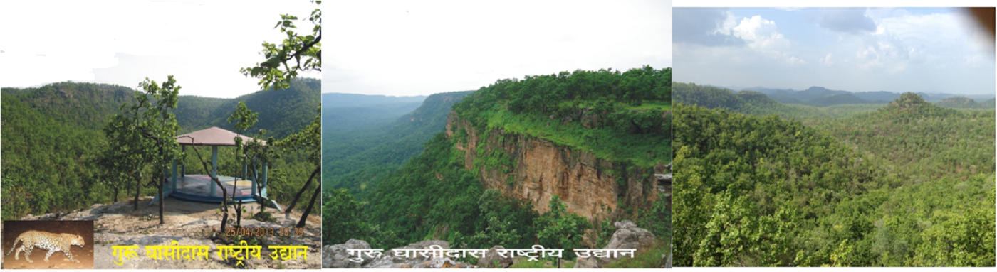 Gurughasidas National park