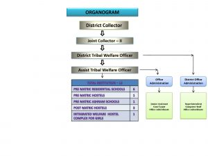 Tribal Welfare - organogram