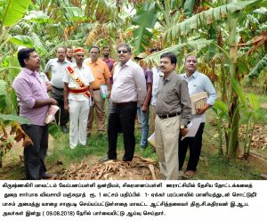 Collector inspection agri dept