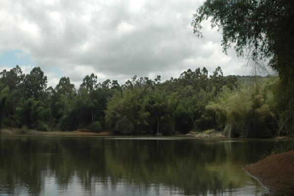 ஐயூர் சாமி ஏரி