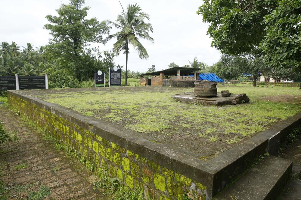 image Nilapadu thara
