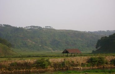 Syntuksiar paddy field