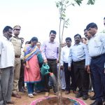 District Collector planted tree
