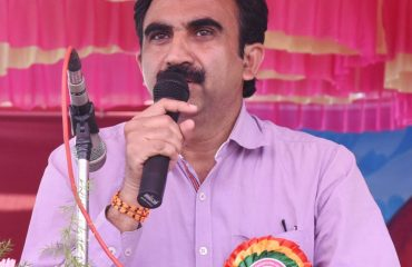 Collector addressing