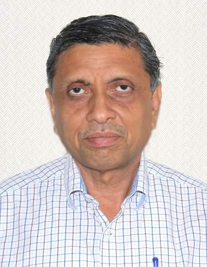 collector navsari