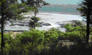 नदी का दृश्य