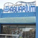 Aquarium Entry Gate