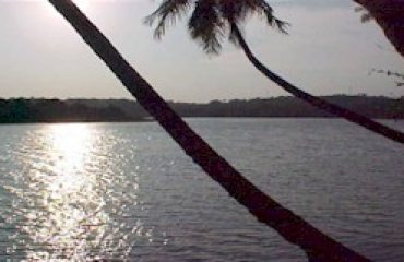 Backwaters and