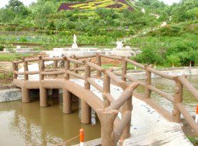 Bridge in Mangalya Van