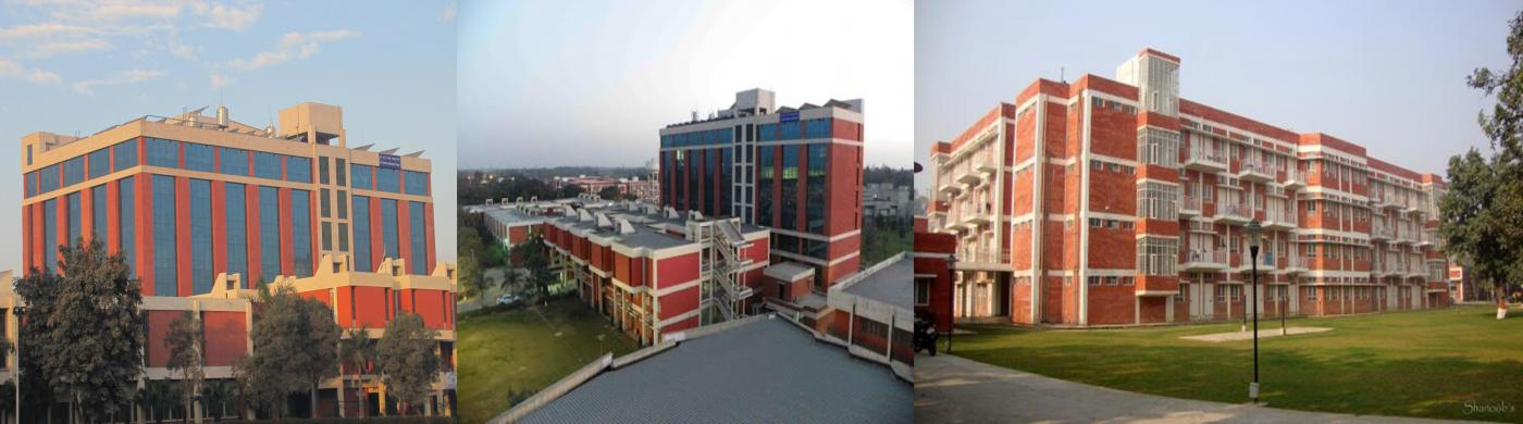 Central Pulp & Paper Research Institute Saharanpur