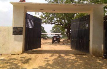 Haliyapur Gallery photo8