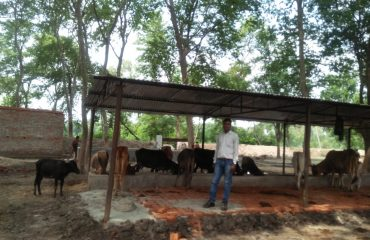 Domanpur Koorebhar Photo2