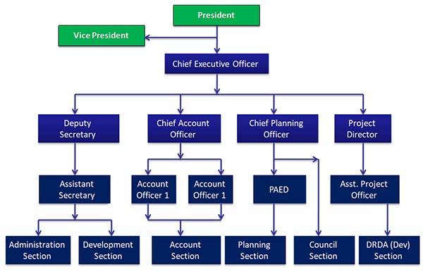 Organization Chart zp
