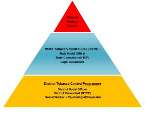 STRUCTURE_OF_NTCP