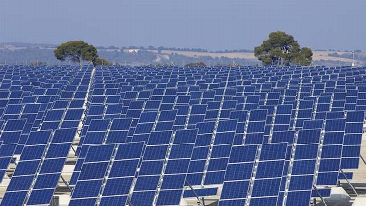 Solar Plant Rewa