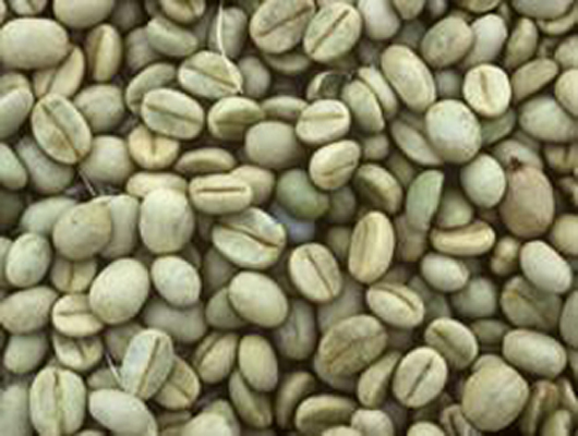 Bodinayakanaur Coffee product