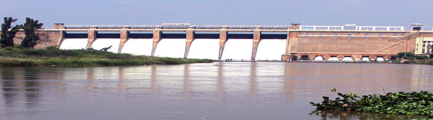 Vaigai Dam in Theni