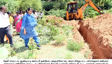 collector inspection 16jul19