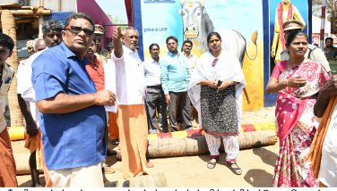 Jallikattu place inspection