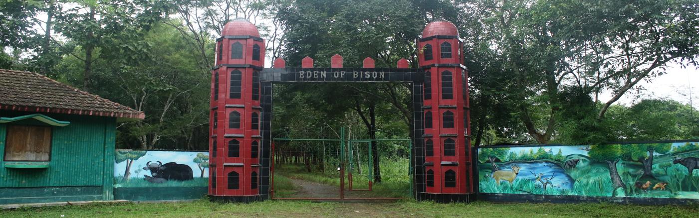 Trishna – Home of Bison