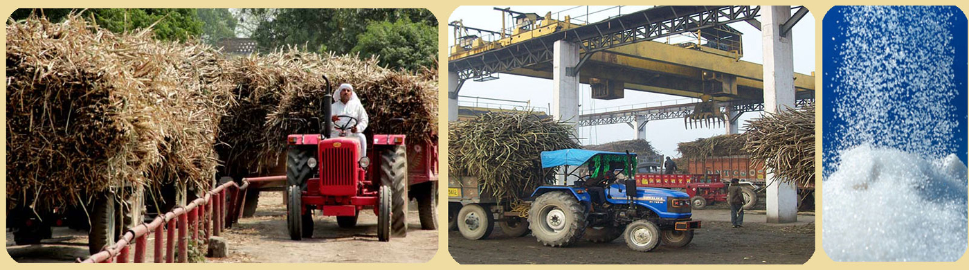 Sugar Farming / Industry at District banner
