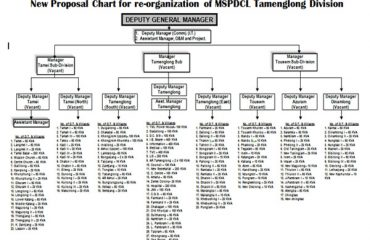 Organogram of MSPDCL(Power Department)