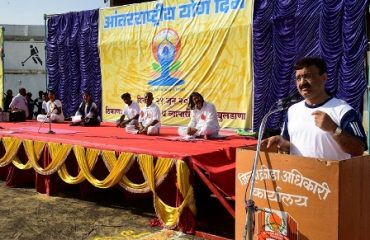 Image of Collector in Yoga Day