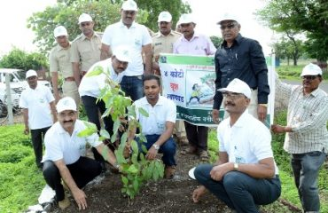 image of Tree Plantation by District Collector