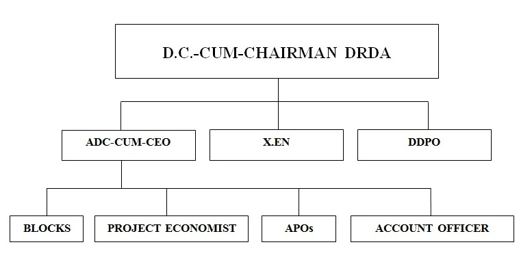 Organisational Structure of DRDA