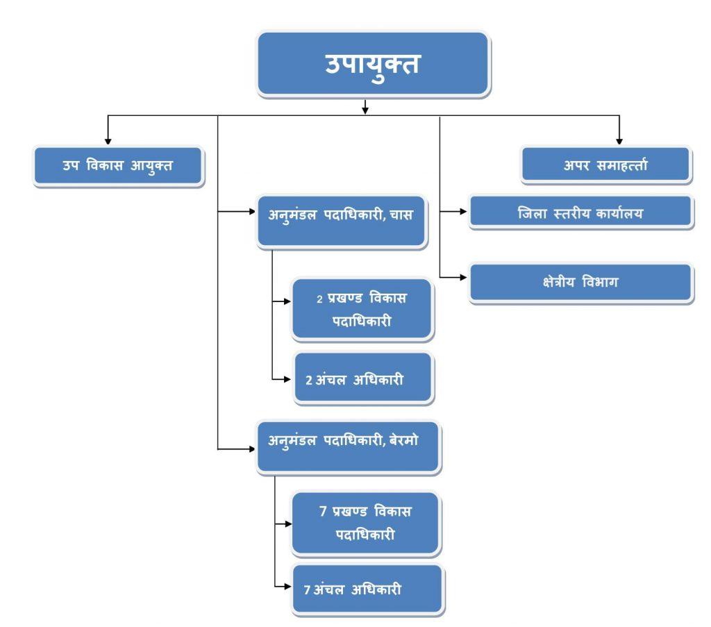 संगठन चार्ट