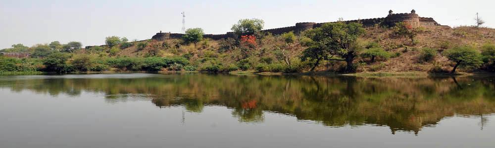 Pavanraje Fort pauni