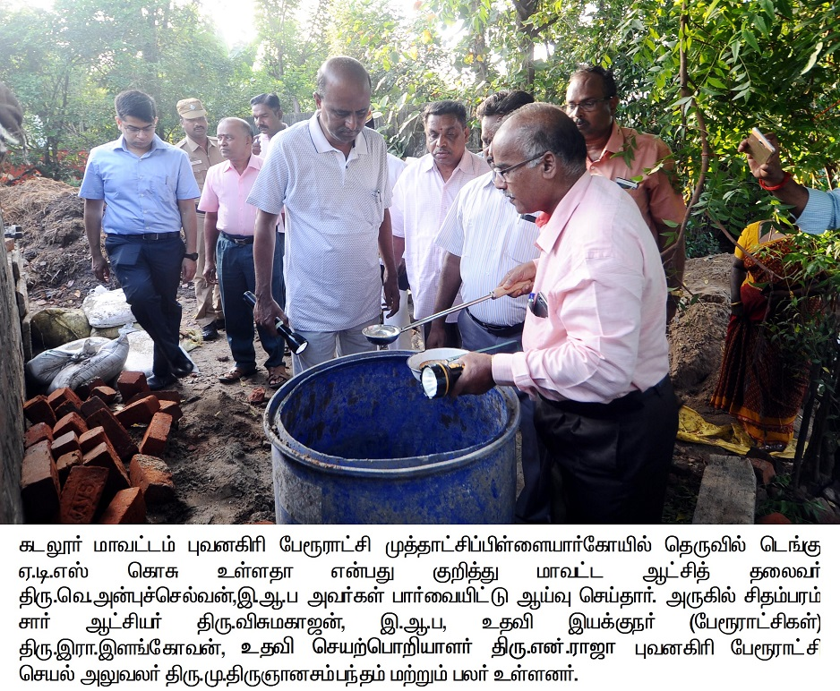 Collector Inspection Dengue