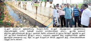 Collector Dengue Inspection