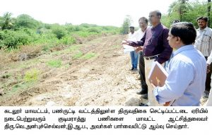 Kudimaramathu inspection