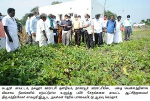 Inspection on crop damage due to heavy rain