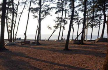 डहाणू समुद्रकिनारा
