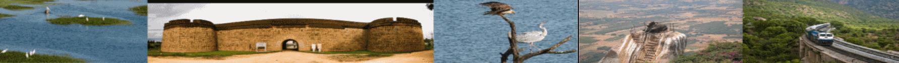ಆಂತರಿಕ ಬ್ಯಾನರ್ ಚಿತ್ರ