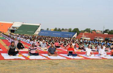 yoga sukhasana