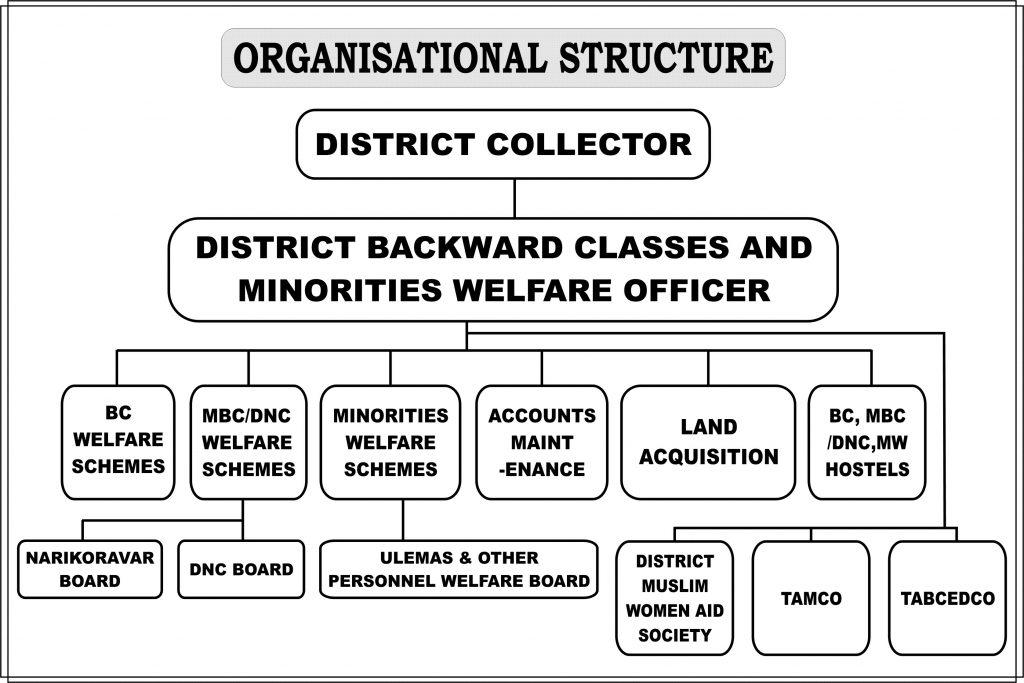 Image of Organisation Chart