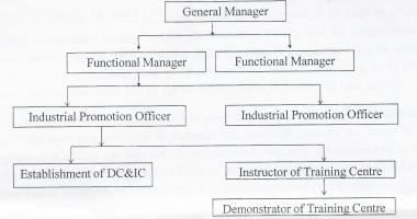 Organization Chart DCIC