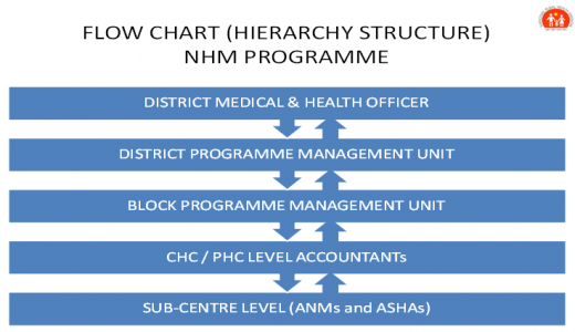 Organisational Structure Health NHM