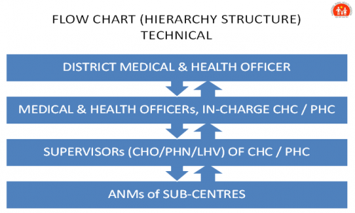Health Department Organisational Structure